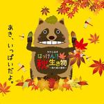 開催中『はっけん!!秋の生き物 -落ち葉の冒険-』