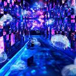 11/19(日)まで開催! 『Fairy tale in Aquarium~水と幻想の世界~』
