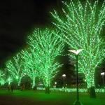 【川口市】12/8(金)~2/14(水) 緑の煌めきに包まれる光の森 「かわぐち光のファンタジー2017」