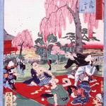季節展示『さくら・桜』