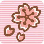 地元の桜情報!