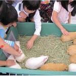 大阪市|おでかけイベント情報 動物園・図書館・行政イベント【5月9日更新】
