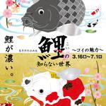 開催中~7/1(日)相模原市ふれあい科学館『鯉の知らない世界~コイの魅力~』