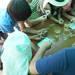 大阪市|おでかけイベント情報 動物園・図書館・行政イベント【7月4日更新】