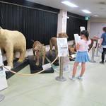 大阪市|おでかけイベント情報 動物園・図書館・行政イベント【8月8日更新】