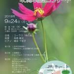 「川崎市|9/24(月・祝) コーラス「柿の実」40周年 記念コンサート」