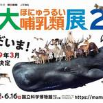 東京・上野│陸と海のなかまたち、上野に再集結!特別展 「大哺乳類展2」