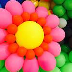 大阪市|おでかけイベント情報 動物園・図書館・行政イベント【10月31日更新】vol.1