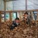 「厚木市|11月下旬~1月末 大自然をゆっくり満喫!『落葉風呂』で遊んでみよう!」