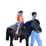 「海老名市|2/24(日) ビナウォークで『いちにち どうぶつ村&ポニー乗馬体験』」