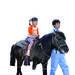 「海老名市 2/24(日) ビナウォークで『いちにち どうぶつ村&ポニー乗馬体験』」