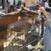 首都圏版 プレゼント|まみたん新年度号 動物園・水族館へ行こう!入場券プレゼント!