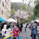 三島郡島本町|桜バザー&HOSEN 子育てスクールのご案内