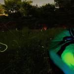 川崎市|第11回ほたる観賞会『ほたる・ねぶたの宵~幻想的な蛍の光と大迫力ねぶたの共演!~』