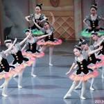 川崎市高津区 【生徒募集中】3歳から習える本格バレエレッスンで憧れのプリマに♪