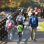 【日高市】11月23日(土・祝)・24日(日) 日高かわせみの里ツーデーウオーク開催