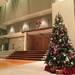 横浜市青葉区|12/14(土) 『親子のためのワンダー・キンダー・クリスマス・コンサート』