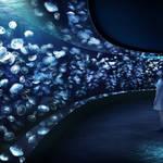 東京・豊島区 |サンシャイン水族館 新展示エリア「海月空感」4月オープン!
