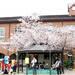 【4月25日(土)堺市南区】原山台幼稚園イベント◆げんきっこあつまれ~!! ☆