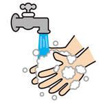 正しい手の洗い方!