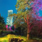 大阪市|大阪市・図書館・動物園情報【7月8日更新】vol.2
