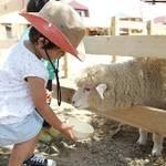 【まみたん|南大阪|イベントレポート】2019年7月太平寺幼稚園イベント開催しました。