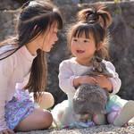 動物とふれあう生活 動物が子どもに与える影響