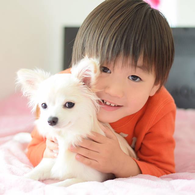 動物とふれあう生活 ペットを飼ってみよう!
