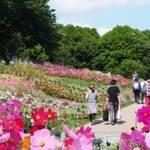9月22日(金)~10月22日(日)『里山ガーデン秋の大花壇』
