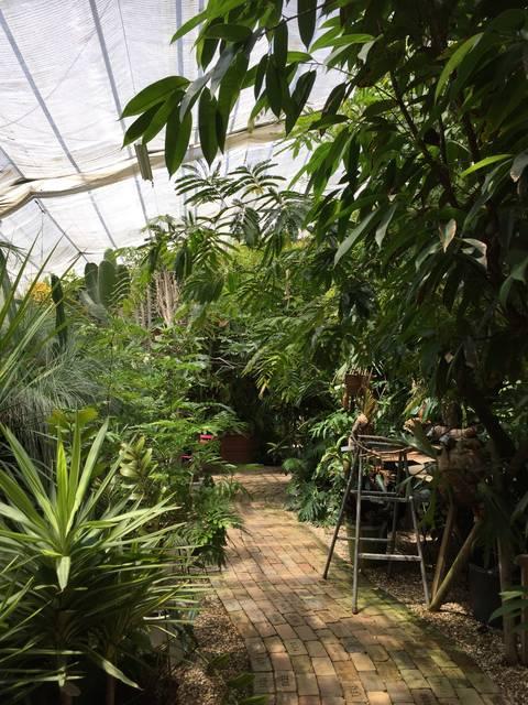 植物の種類が豊富!