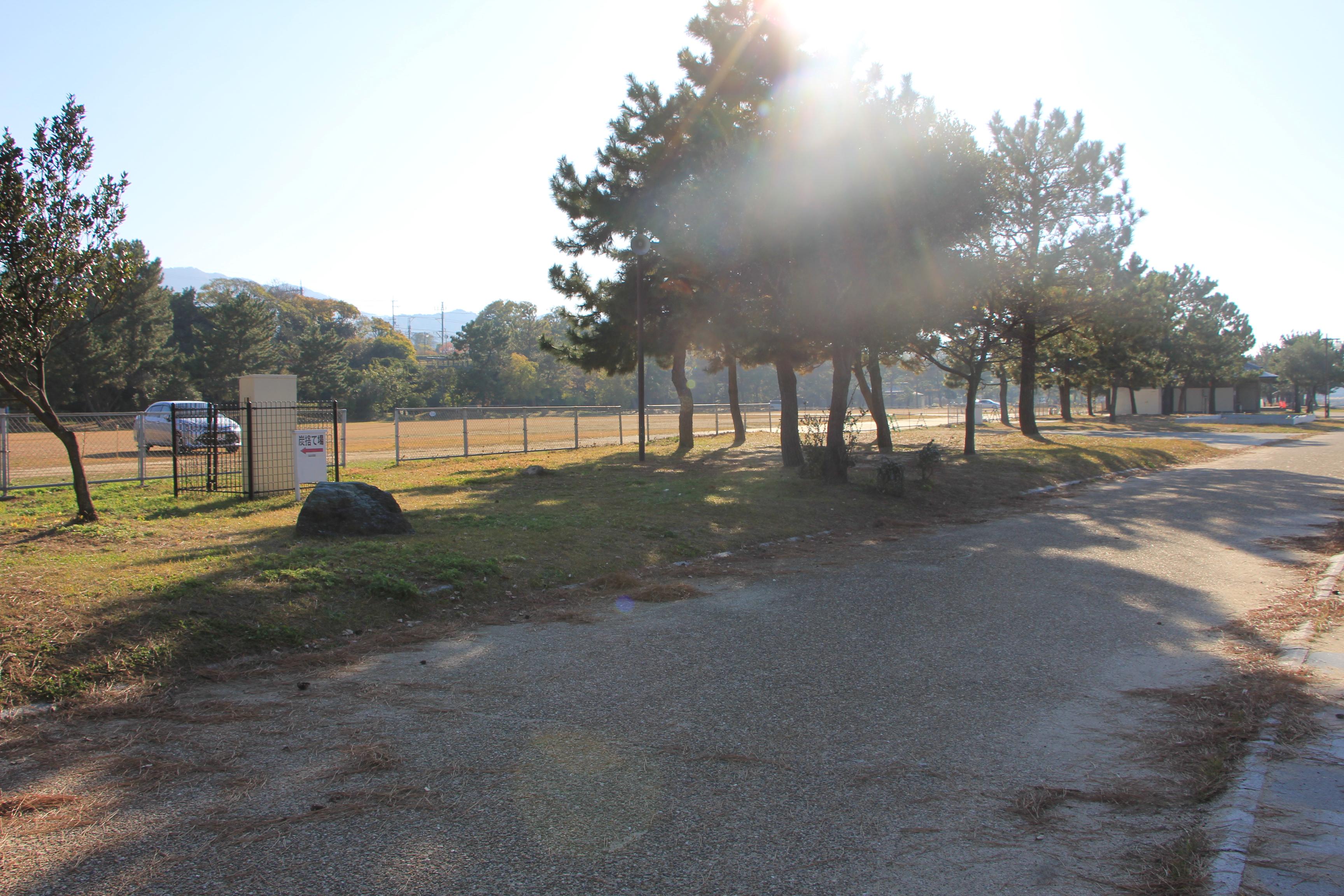 こちらは、BBQができる場所の近くの駐車場です。