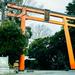 縁結びの神様 川越氷川神社:安産、お宮参り、戌の日