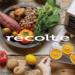 エッグスチーマー   récolte(レコルト)