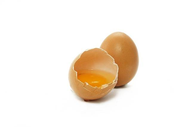 Free photo: Egg, Yolk, Food, Protein, Egg Yolk - Free Image on Pixabay - 2796898 (14364)