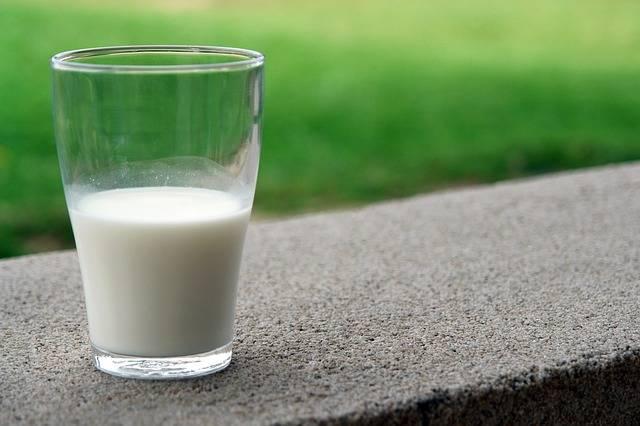 Free photo: Drink, White, Milk, Goat - Free Image on Pixabay - 1818550 (14365)